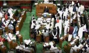 Opposition, Protest, Lok Sabha, Proceeding, Stop