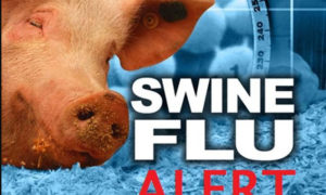 Survive, Swine Flu, Article, H1N1, WHO, Health