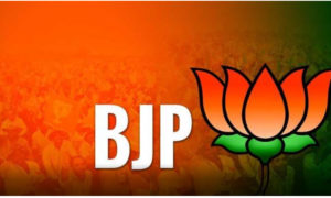 BJP, Successful, Government, Gujarat Assembly Elections