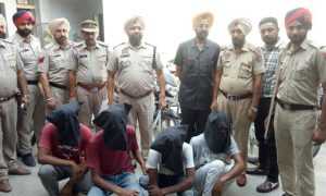 Moga, Police, Recovered, 21 Motorcycles, Theft