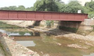 Bathinda, Canal, Closed, Silently, Stop, Cultivation