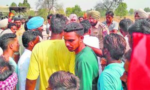 Farmers, Stopped, Vegetable, Fruit, Carts, Police, Rescued
