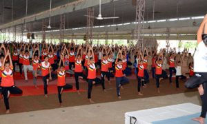Yoga, Camp, Held, Dera, Sacha, Sauda