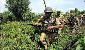 Search, Operation, Security, Forces, Kupwara, Forests, Continues