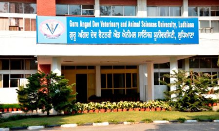 Veterinary University ,Ludhiana, India, Agricultural Research Council