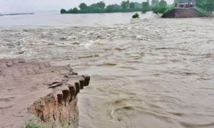 Bihar, Flood, Danger, Died, Influenced, CM, Nitish Kumar