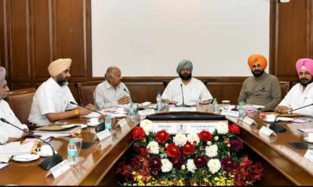 Punjab Government, Approves, Electronic Service Delivery, Ordinance -2017, Right to Service Act-2011