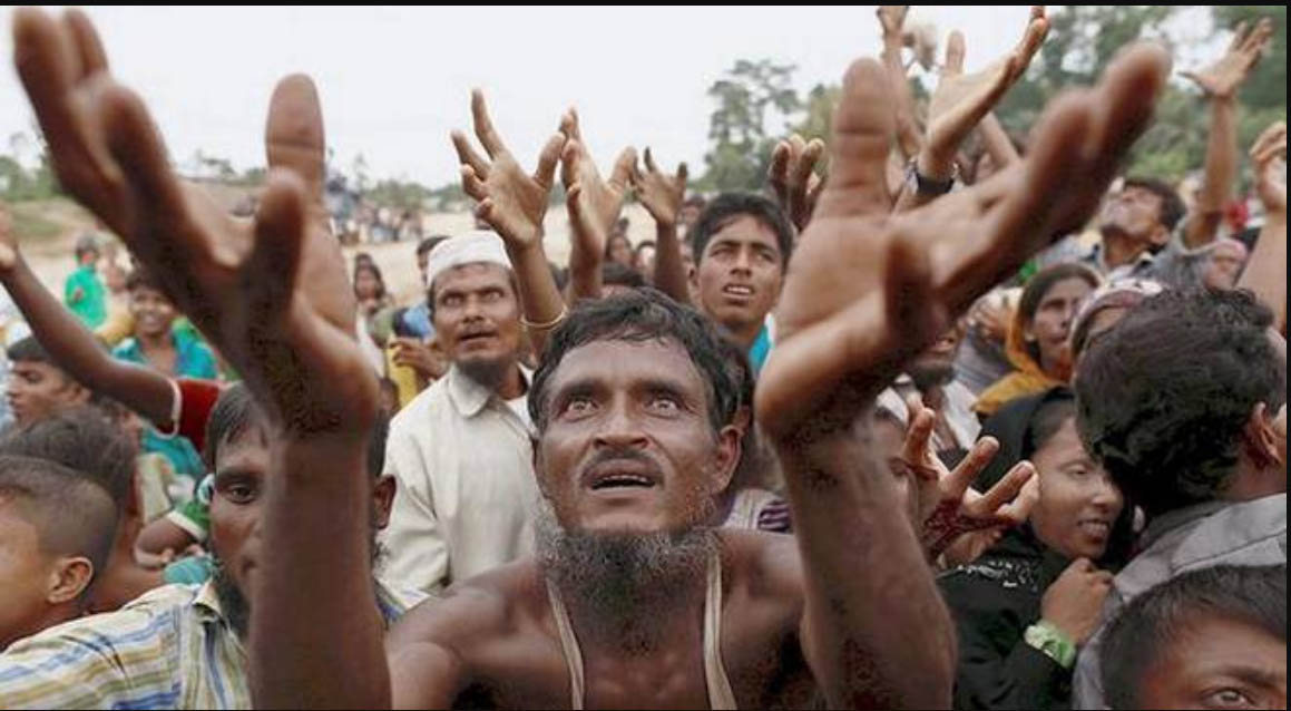 Rohingya, Honored, Homecoming,  USA