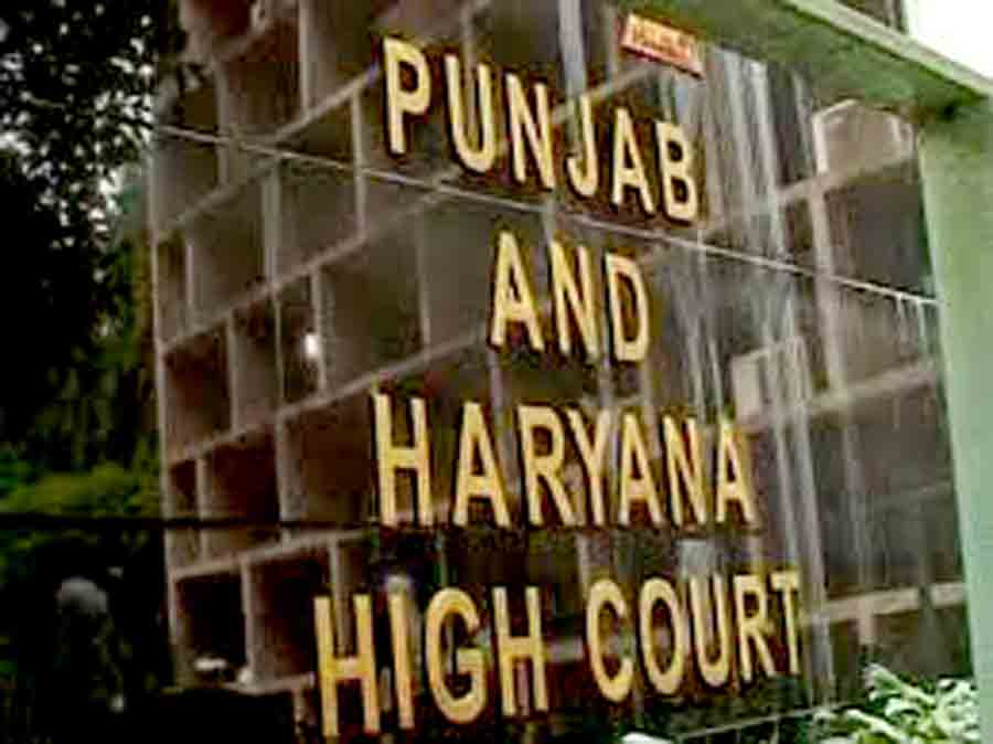 High Court, Reached, Cross, Examination, Catechu, Defense