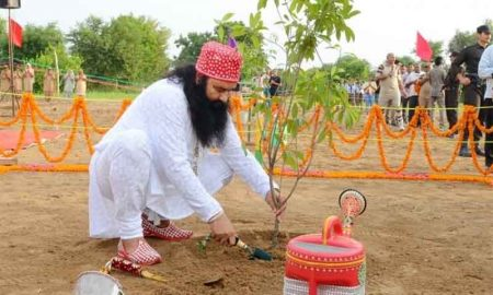 Environment Day, Names, Dera Sacha Sauda, After, Planting, Four, World, Records