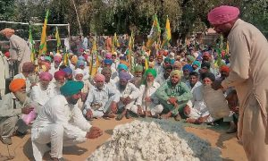 Farmers, Protest Against, Government, Protesting, Burning