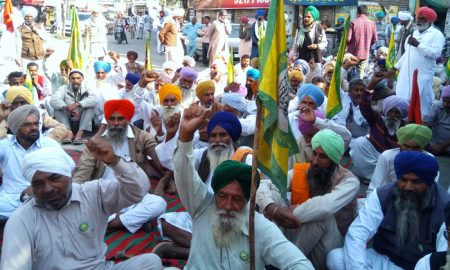 Farmers, Accused,Snatching,trail, cotton, Arthi, planted, Kisan, Union