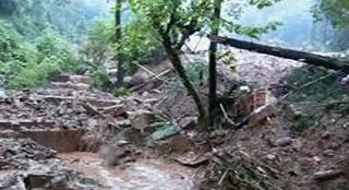 Eight People Died, Indonesia Landslide