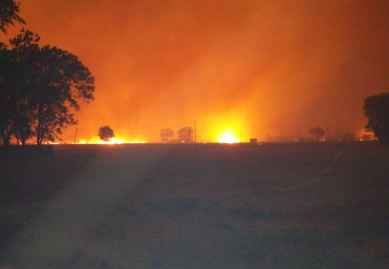 Fire, Field gave , Village, Niwiwala