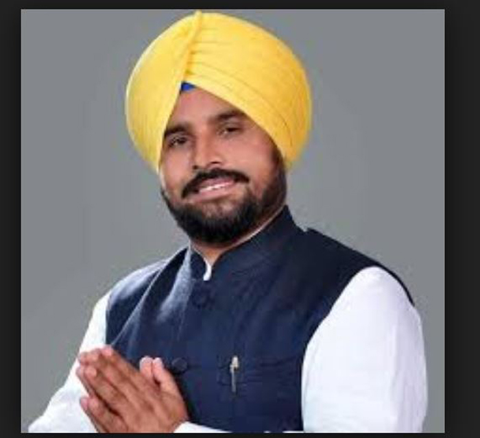 Candidate, Shergill, Election, High Court