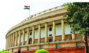 DNA, Bill Passe, Lok Sabha, Opponents, Protested