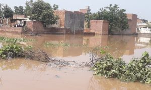 Situation, Ghaggar Floods, Even More Complicated