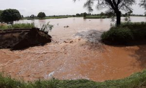 Hundreds, Acres, Ccrops, Submerged