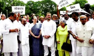 Congress, Protests, Parliament, House
