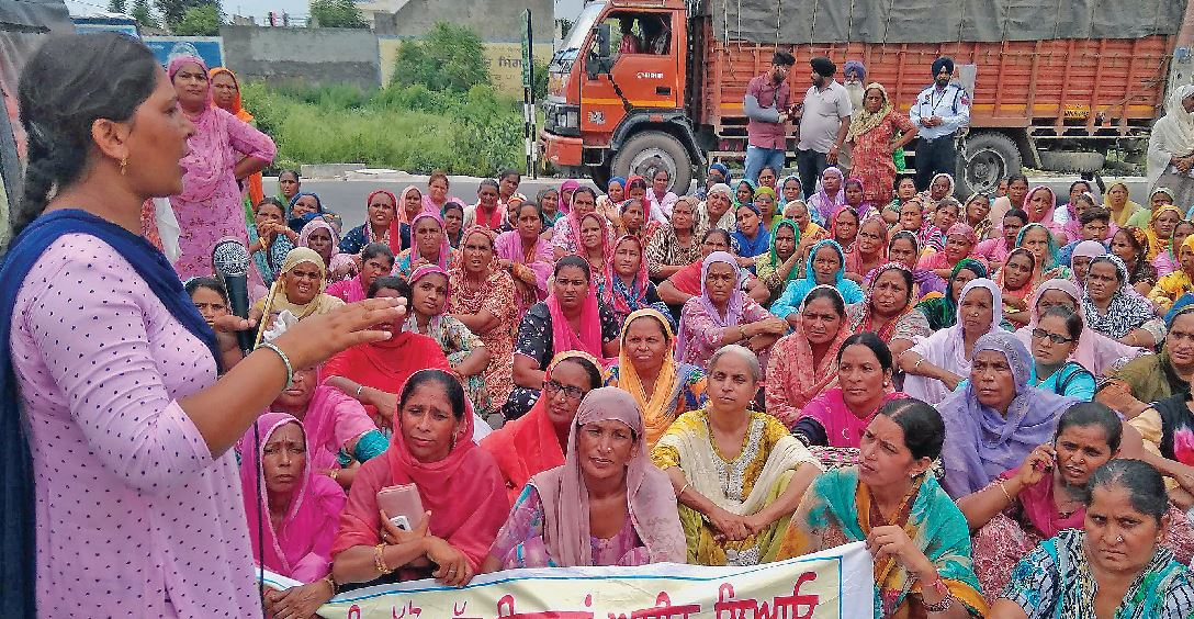 Cook Wives, Hold the Home, Education Minister