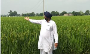 Harvinder Singh, Boing, Became, Example, Farmers