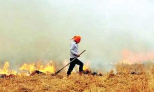 Amarinder Singh, Claims, Action, 2923 Farmers, Burned