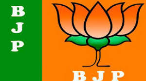 BJP,  District, Elections, Show up only