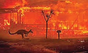 Fire rages in Australia annually